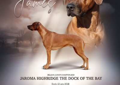 Jaroma Highridge The Dock Of The Bay